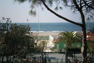 Foto Villa Rif.AF133 in affitto-stagionale situato a Marina di Pietrasanta